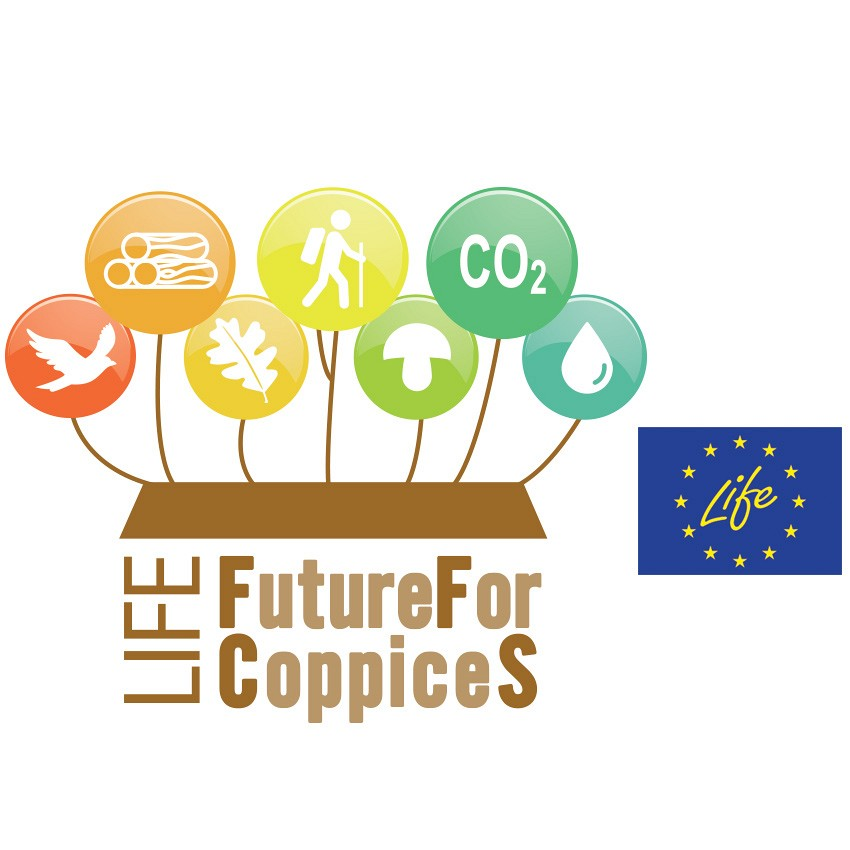 FutureForCoppiceS