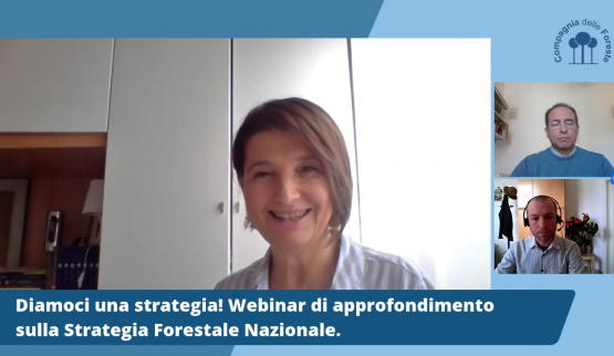 I tre webinar sulla SFN disponibili su YouTube!